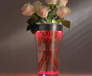 Color Adjusting Illuminated Vase - 300 Different Colors