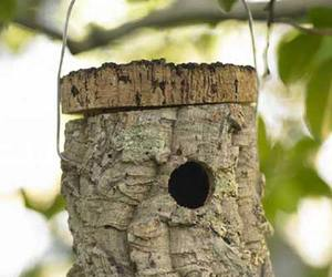Cork Birdhouse