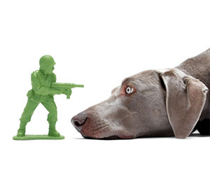 Doca Pet Dogface - Army Man Chew Toy