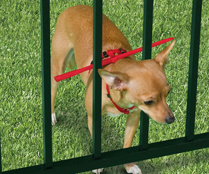 Dog-Gamutt - Escape Preventing Dog Harness