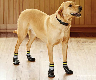 Dog Traction Socks
