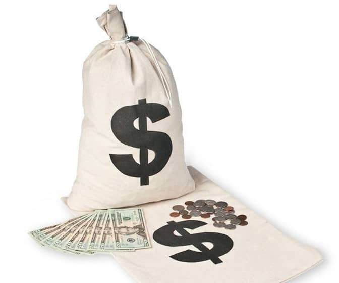 Dollar Sign Money Bags