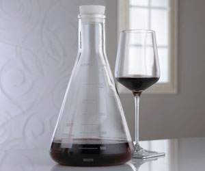 Erlenmeyer Flask Lab Wine Decanter