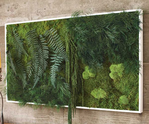Fern And Moss Wall Art