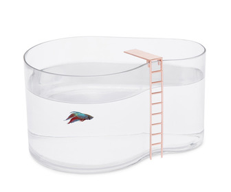 Fishpool Aquarium - Betta Fish Swimming Pool with Diving Board