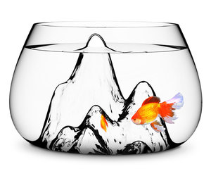 Fishscape - Mountainous Fishbowl