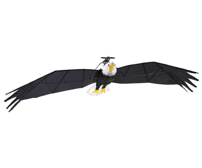 Gigantic Remote Controlled Bald Eagle
