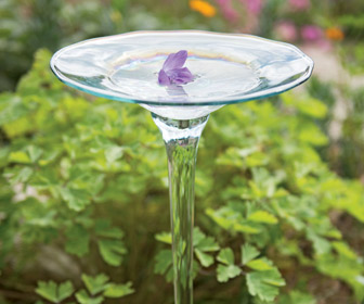 Glass Bird Bath - Welcomes Birds and Butterflies