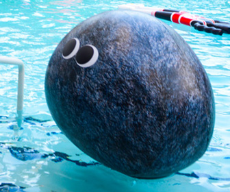 Googly-Eyed Rock Pool Float