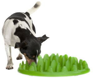 Green by Northmate - Tuft of Grass Pet Feeder Slows Eating