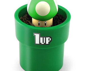 Grow Your Own Super Mario 1up Mushroom