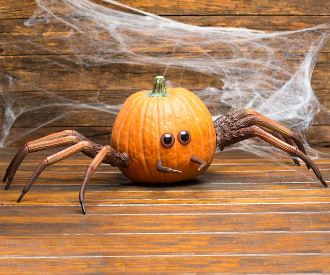 Halloween Spider Pumpkin Appendages