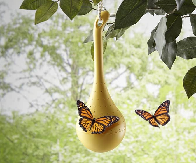 Hanging Butterfly Oasis Feeder