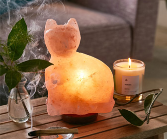 Himalayan Salt Lamp Cat