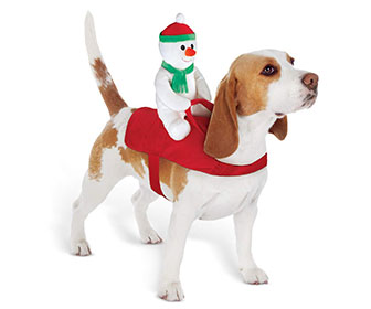 Holiday Snowman Dog Rider Costume