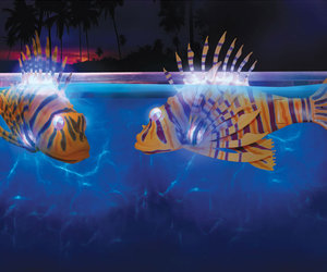 Illuminated Robotic Pool Fish