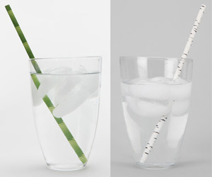 Kikkerland Birch and Bamboo Paper Straws