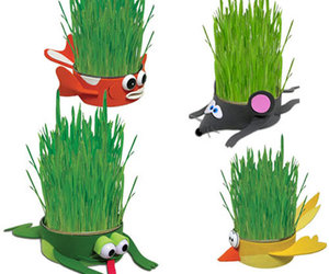 Kitty Can Chews Organic Cat Grass