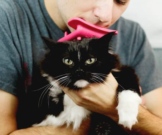 Licki Brush - Cat Grooming Tongue Brush