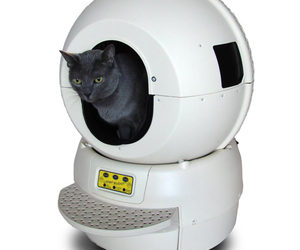 Litter Robot - Automatic Self-Cleaning Litter Box