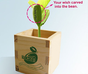 Magic Beans That Sprout With Secret Messages!