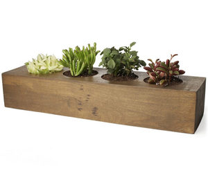 Mango Wood Planter