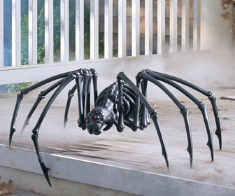 Massive Black Spider Skeleton