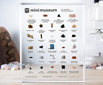 Mini Museum - Collection of Rare Specimens From Earth and Beyond