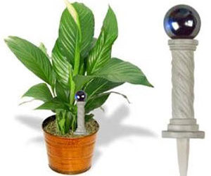 Fancy Plants - Miniature Gazing Ball Plant Ornament