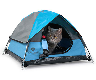 Miniature Tents For Cats