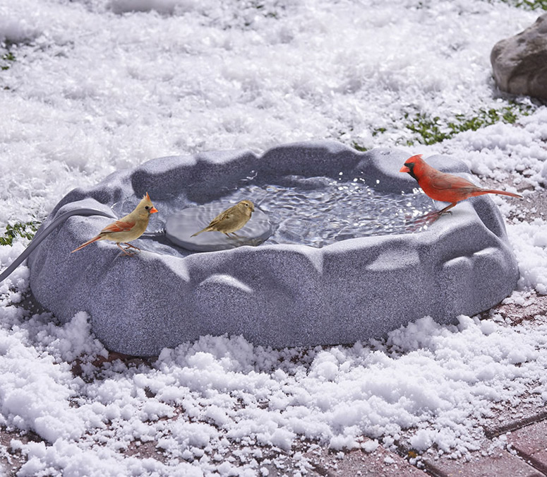 Never Frozen Heated Bird Bath