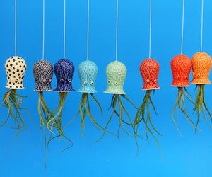 Octopus Air Plant Hanging Planter