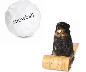 Orbee-Tuff Snowball Dog Chew Toy