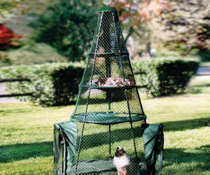 Outdoor Cat Teepee