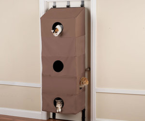 Over The Door Cat Condo