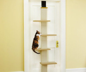 Over The Door Cat Climber