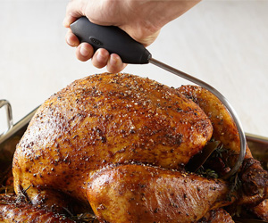 Oxo Turkey / Poultry Lifter