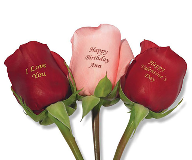 Personalized Roses - The Perfect Valentine's Day Gift