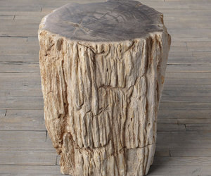 Petrified Wood Stump End Table