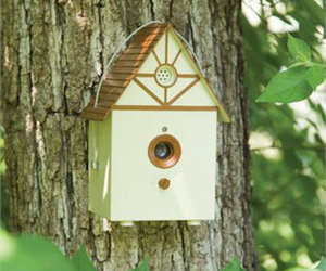 PetSafe Ultrasonic Birdhouse Stops Barking Dogs
