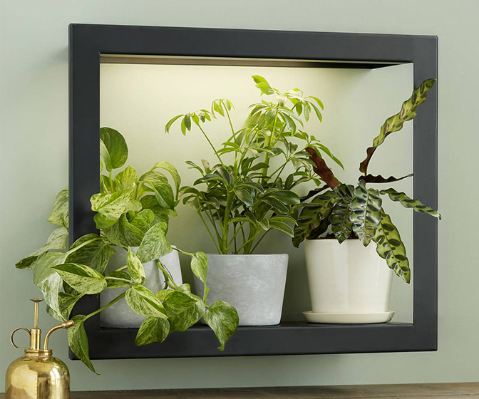 Plant Grow Light Picture Frame Shelf