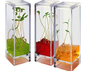 Plantarium - Space-Age Plant Greenhouse