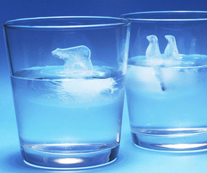 Polar Ice Cube Molds