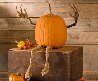Poseable Pumpkin Vine Arms and Legs