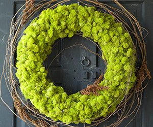 Preserved Reindeer Moss Wreath