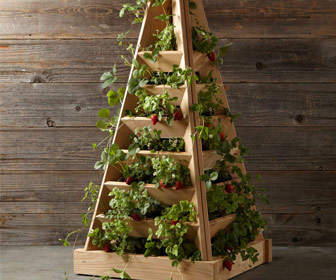 Pyramid-Shaped Cedar Garden Planter