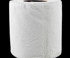 Revenge Toilet Paper - Will Not Tear or Rip!