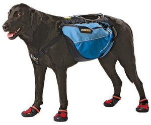 Ruff Wear Approach Pack - Saddlebag For Dogs!