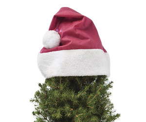 Santa Hats For Plants