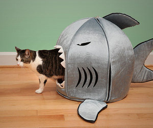 Self-Cleaning Shark Pet Bed